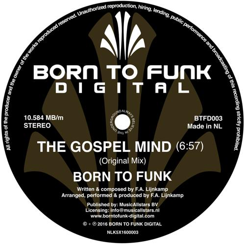 Born To Funk - The Gospel Mind